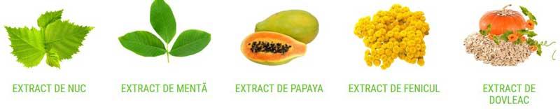 Bactefort Ingrediente