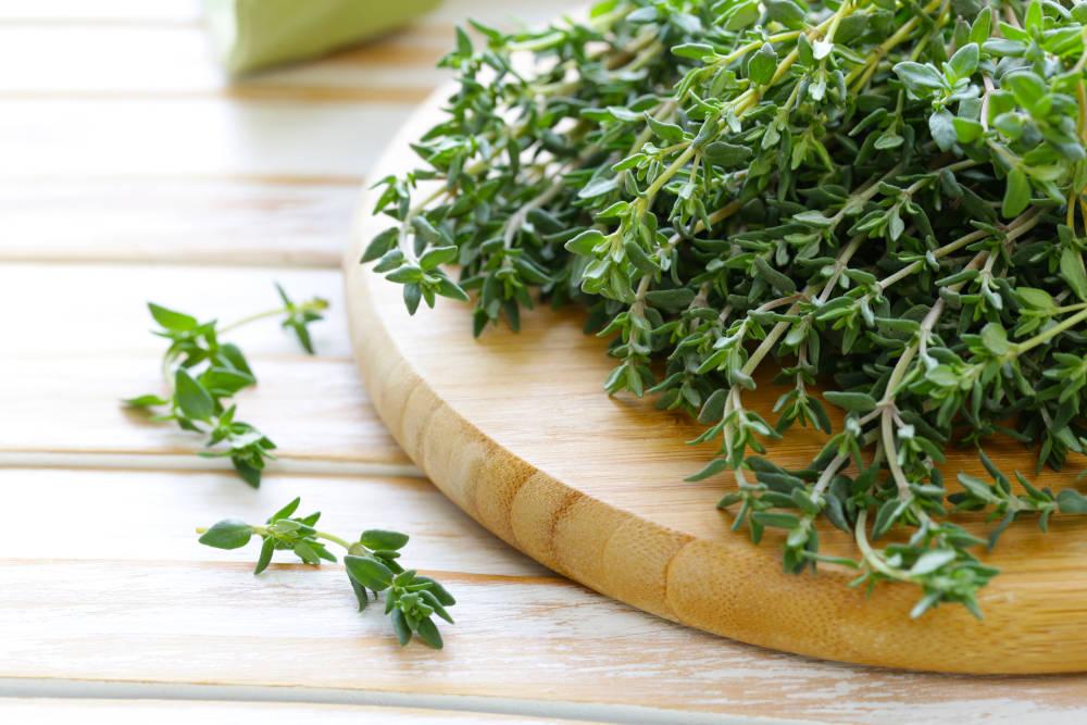 Anti-Parasite Herbal Tea cimbru